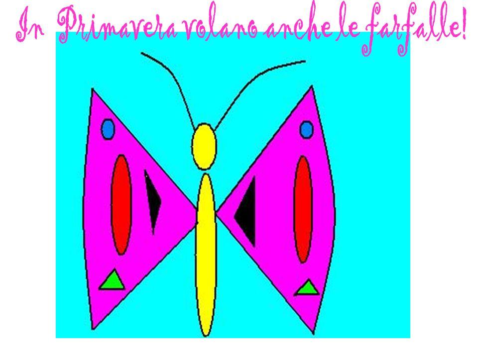 In Primavera volano anche le farfalle!