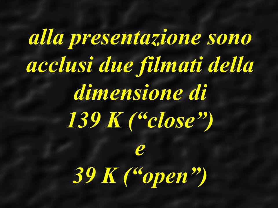 alla presentazione sono acclusi due filmati della dimensione di 139 K ( close ) e 39 K ( open )