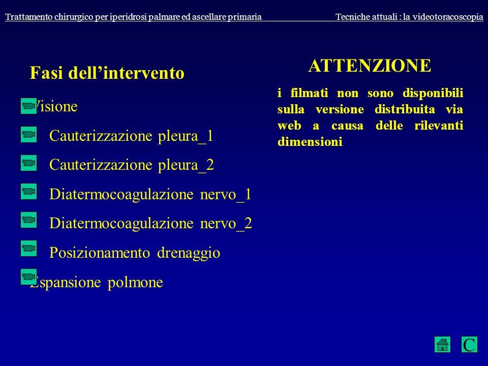 Fasi dell'intervento ATTENZIONE C Visione Cauterizzazione pleura_1