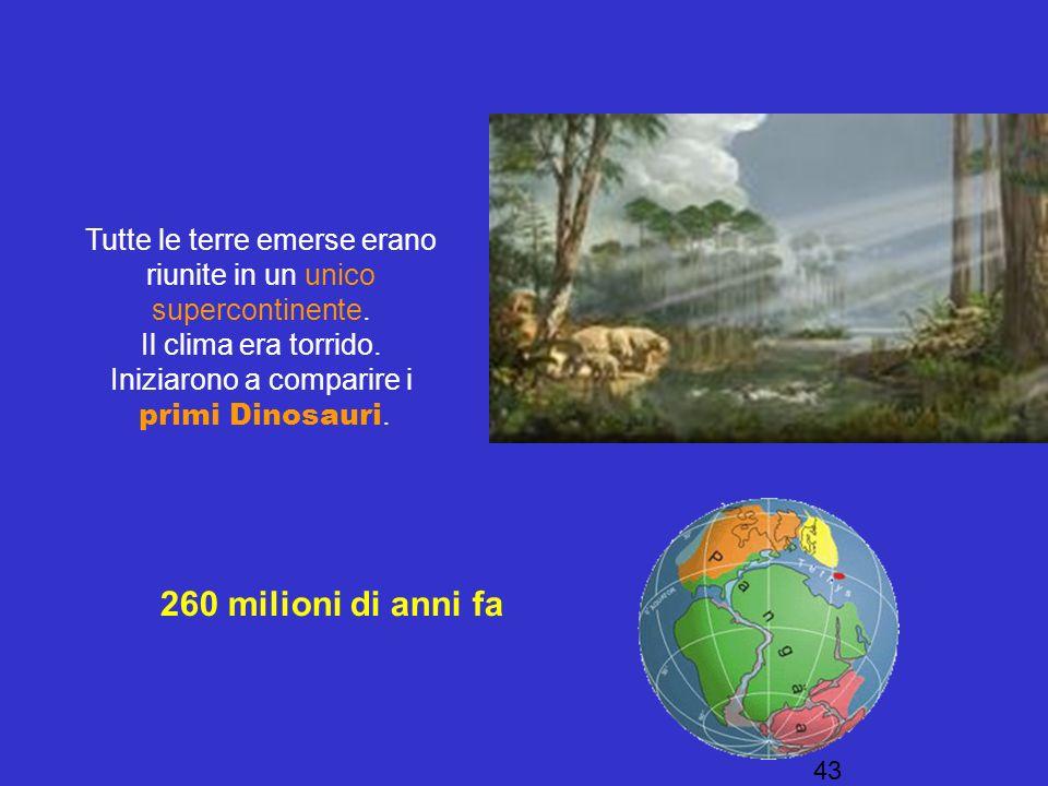 Tutte le terre emerse erano riunite in un unico supercontinente.