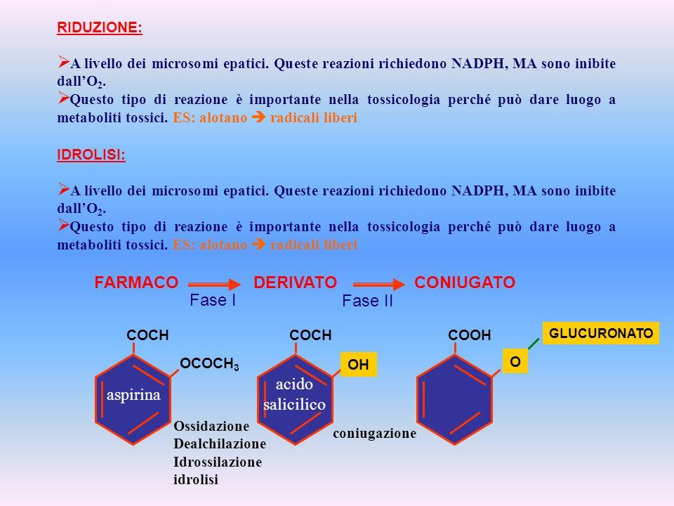 FARMACO DERIVATO CONIUGATO Fase I Fase II acido salicilico aspirina