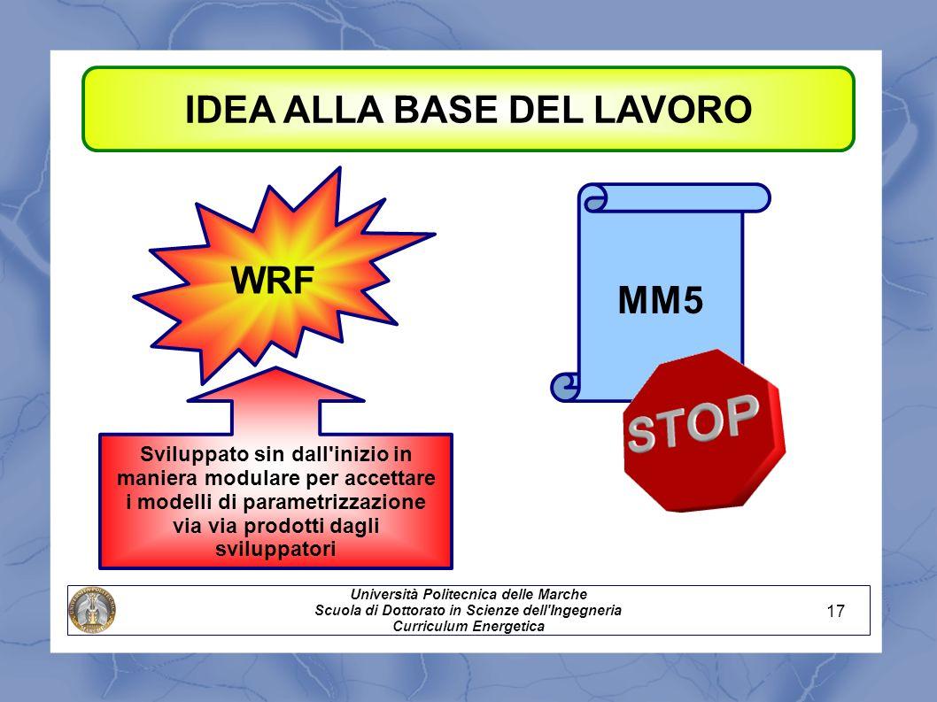IDEA ALLA BASE DEL LAVORO WRF MM5