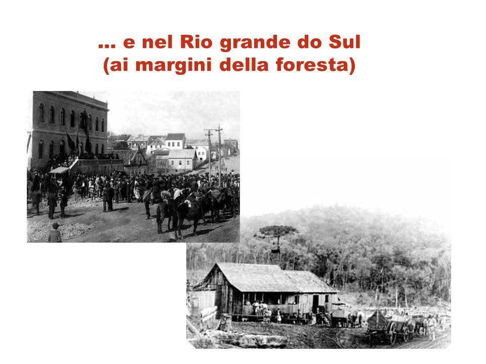 … e nel Rio grande do Sul (ai margini della foresta)
