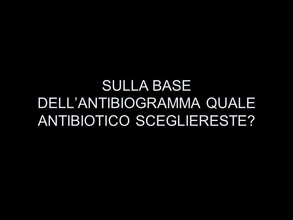 SULLA BASE DELL'ANTIBIOGRAMMA QUALE ANTIBIOTICO SCEGLIERESTE