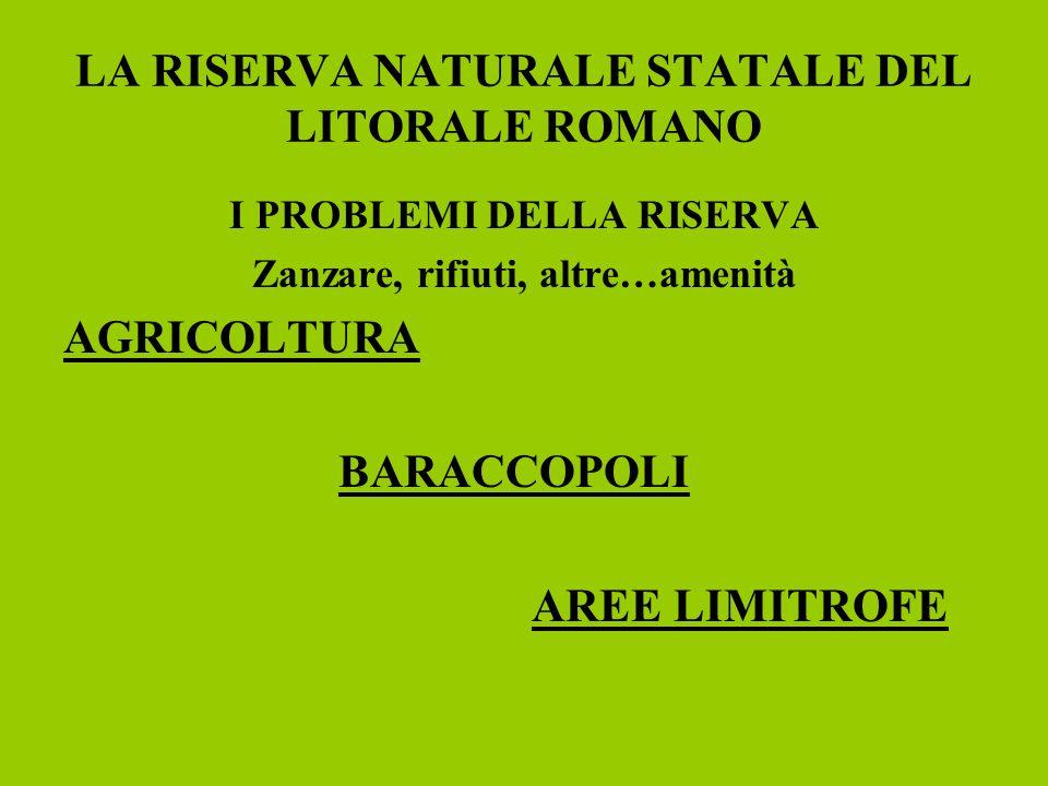 LA RISERVA NATURALE STATALE DEL LITORALE ROMANO