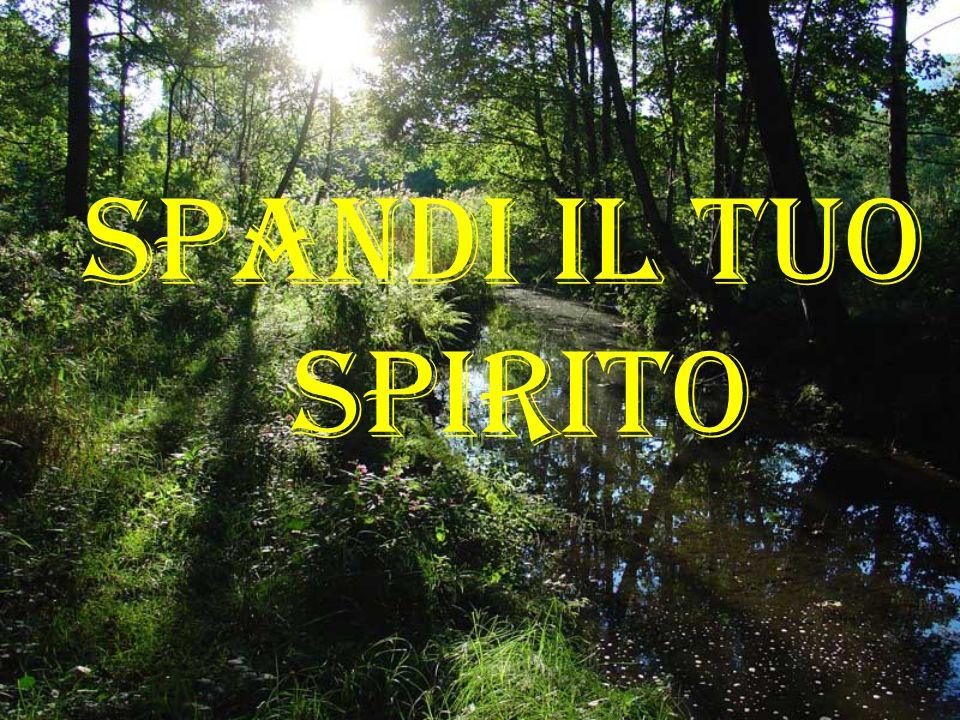 Spandi il tuo Spirito