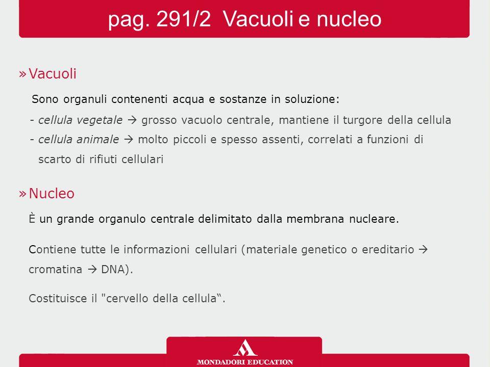 pag. 291/2 Vacuoli e nucleo Vacuoli
