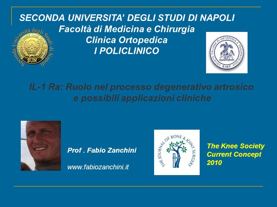 SECONDA UNIVERSITA' DEGLI STUDI DI NAPOLI