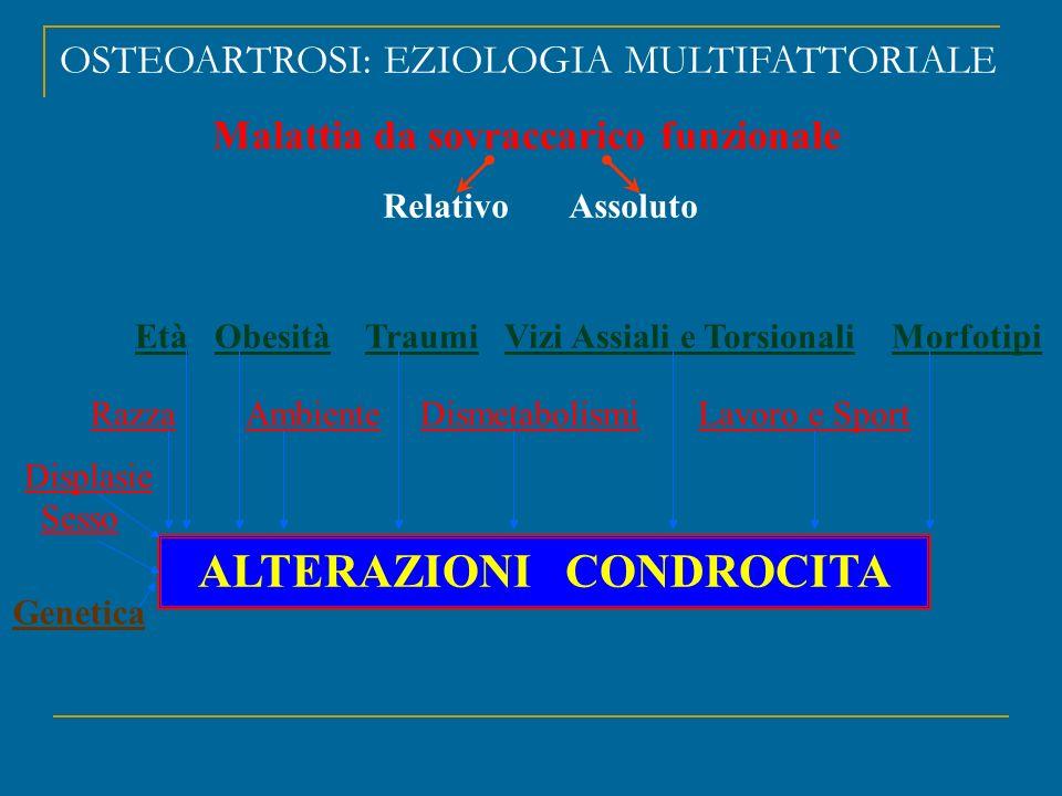 Malattia da sovraccarico funzionale ALTERAZIONI CONDROCITA
