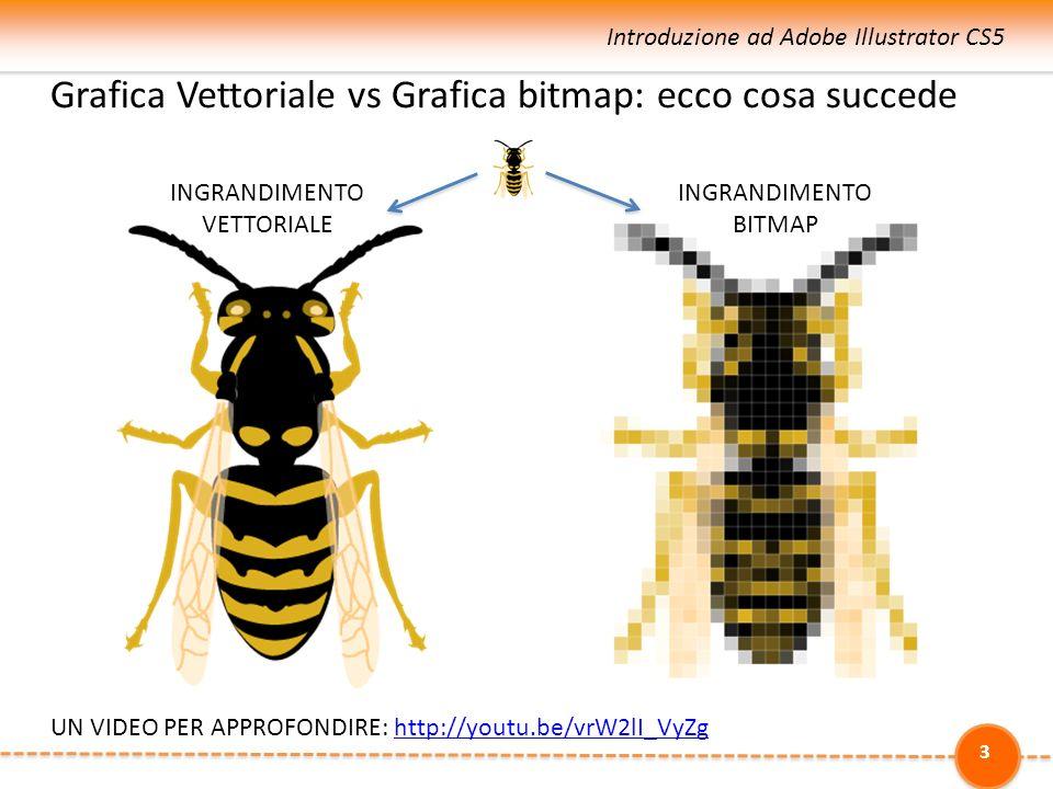Grafica Vettoriale vs Grafica raster