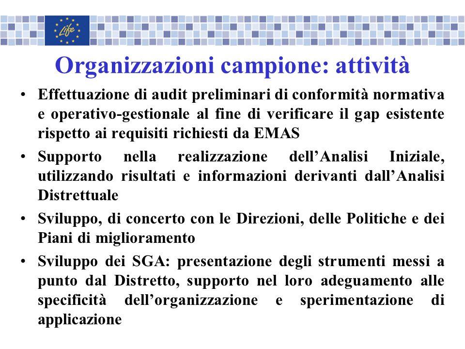 Organizzazioni campione: attività