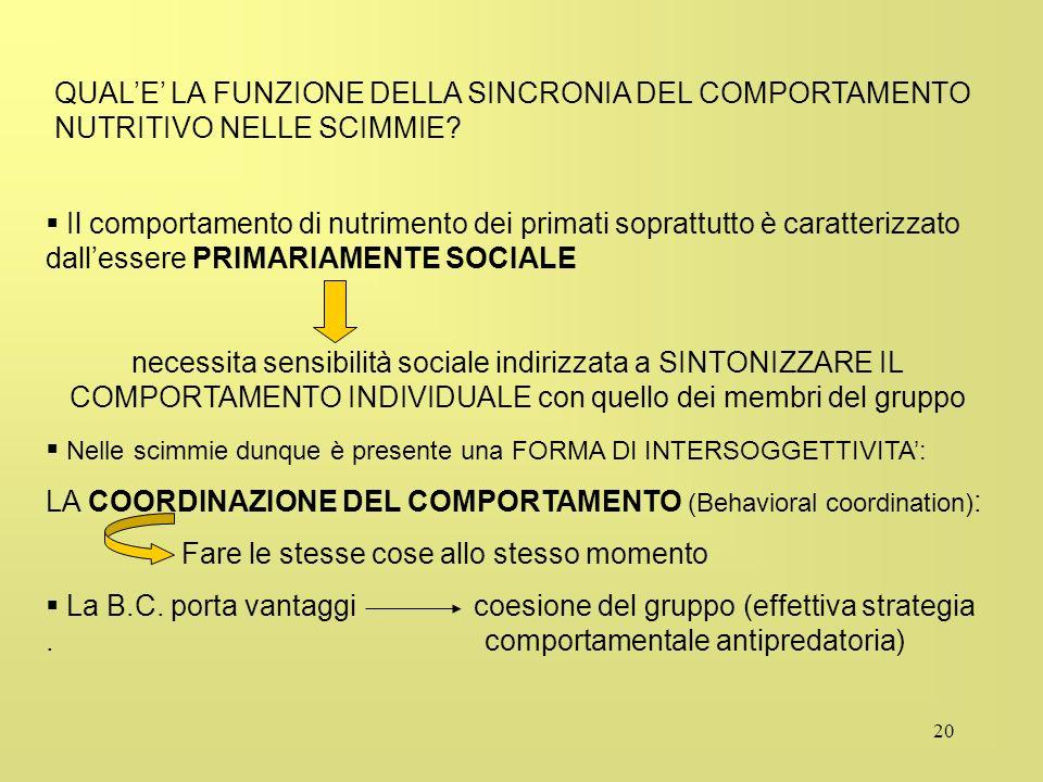 QUAL'E' LA FUNZIONE DELLA SINCRONIA DEL COMPORTAMENTO NUTRITIVO NELLE SCIMMIE