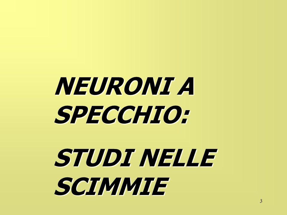 NEURONI A SPECCHIO: STUDI NELLE SCIMMIE