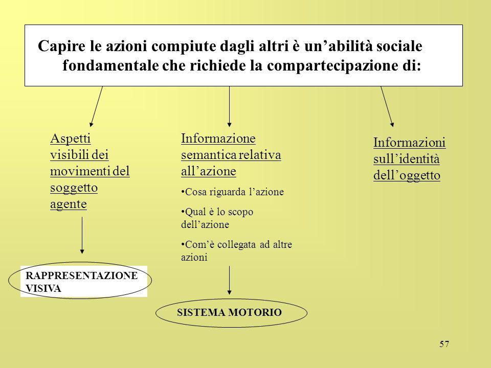 Capire le azioni compiute dagli altri è un'abilità sociale fondamentale che richiede la compartecipazione di: