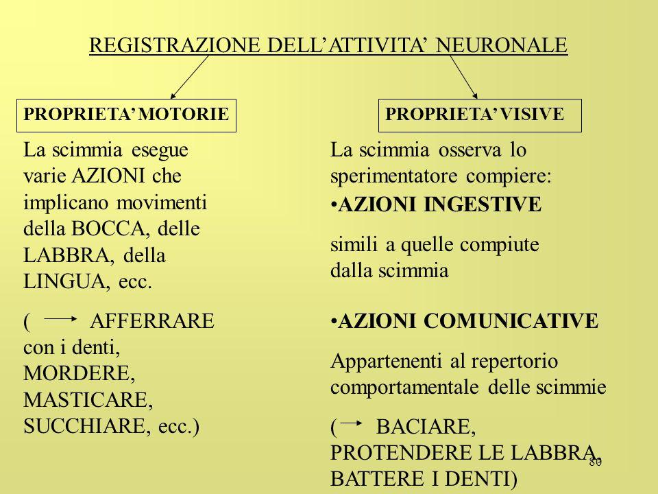 REGISTRAZIONE DELL'ATTIVITA' NEURONALE