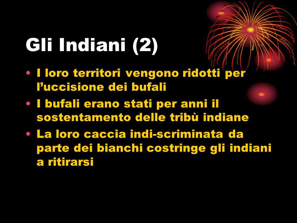 Gli Indiani (2) I loro territori vengono ridotti per l'uccisione dei bufali. I bufali erano stati per anni il sostentamento delle tribù indiane.