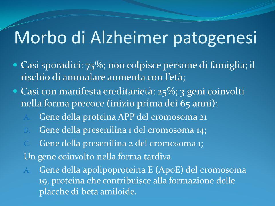 Morbo di Alzheimer patogenesi