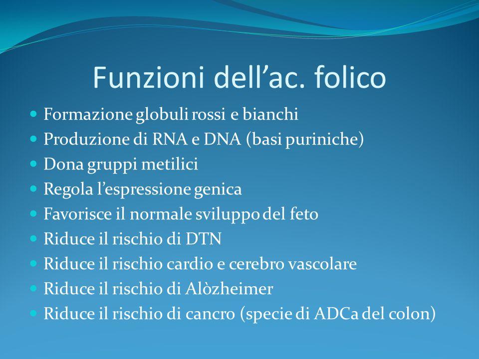Funzioni dell'ac. folico