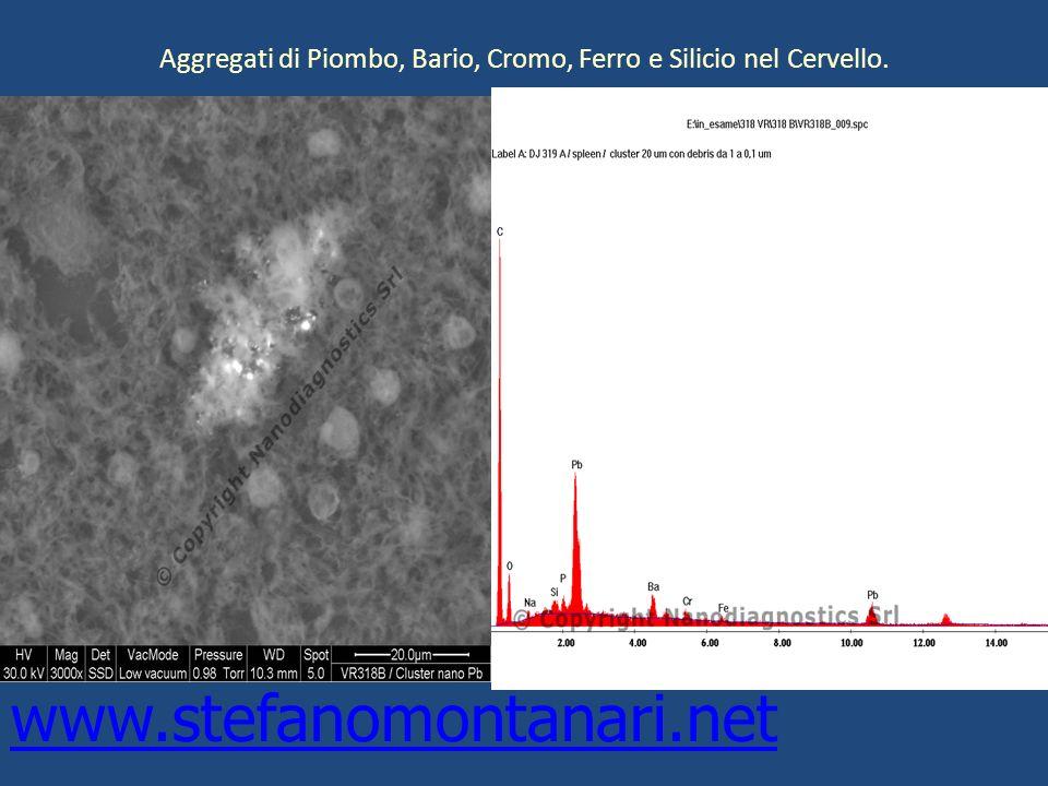 Aggregati di Piombo, Bario, Cromo, Ferro e Silicio nel Cervello.