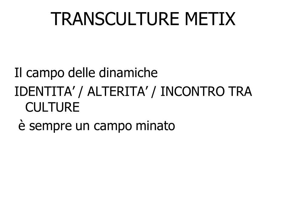 TRANSCULTURE METIX Il campo delle dinamiche