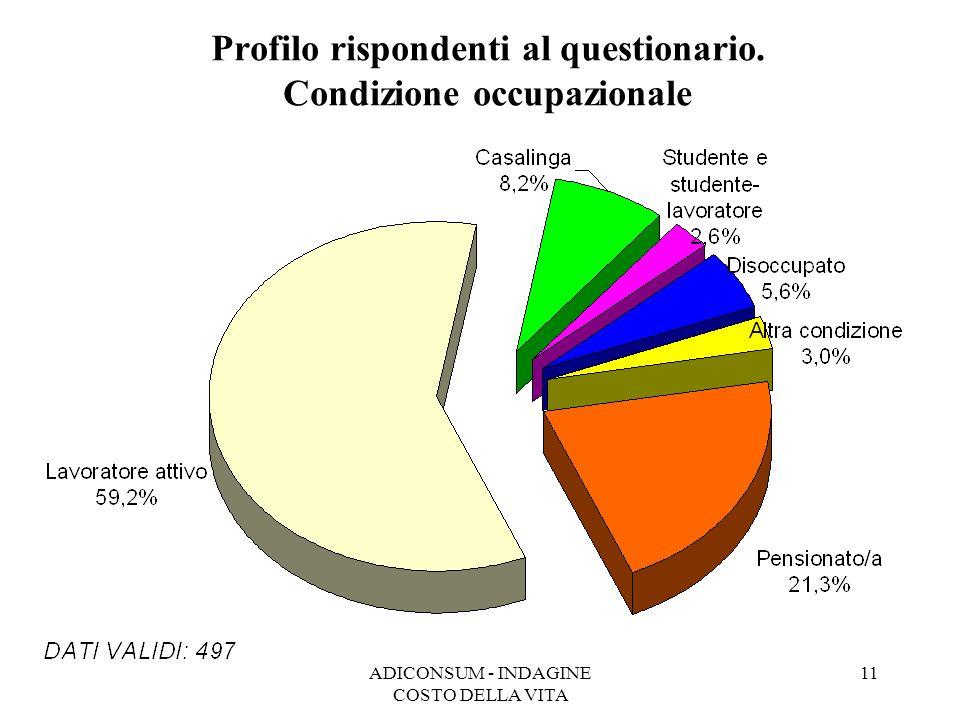Profilo rispondenti al questionario. Condizione occupazionale