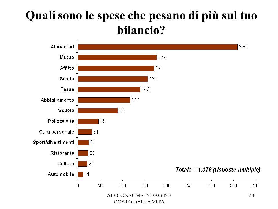 Quali sono le spese che pesano di più sul tuo bilancio