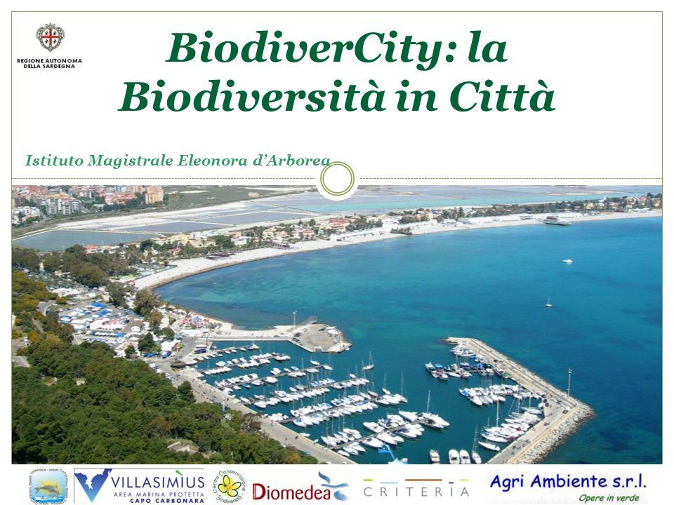 BiodiverCity: la Biodiversità in Città