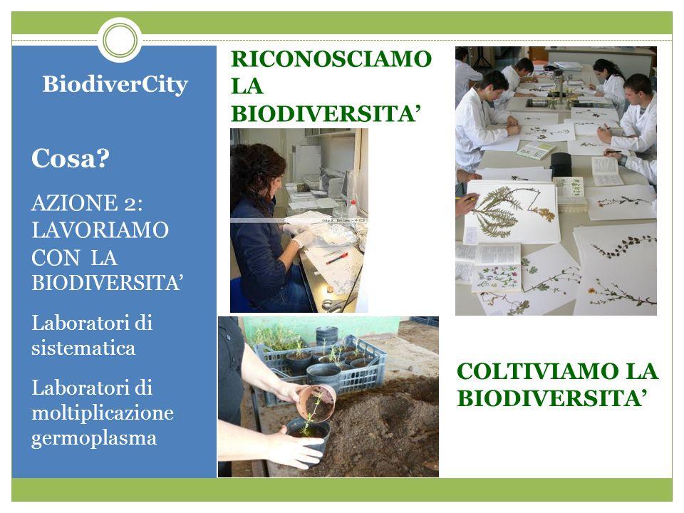 Cosa RICONOSCIAMO LA BIODIVERSITA' BiodiverCity