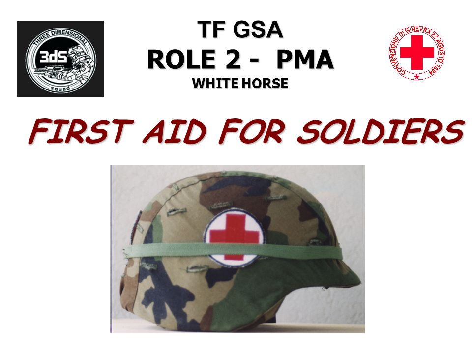 TF GSA ROLE 2 - PMA WHITE HORSE