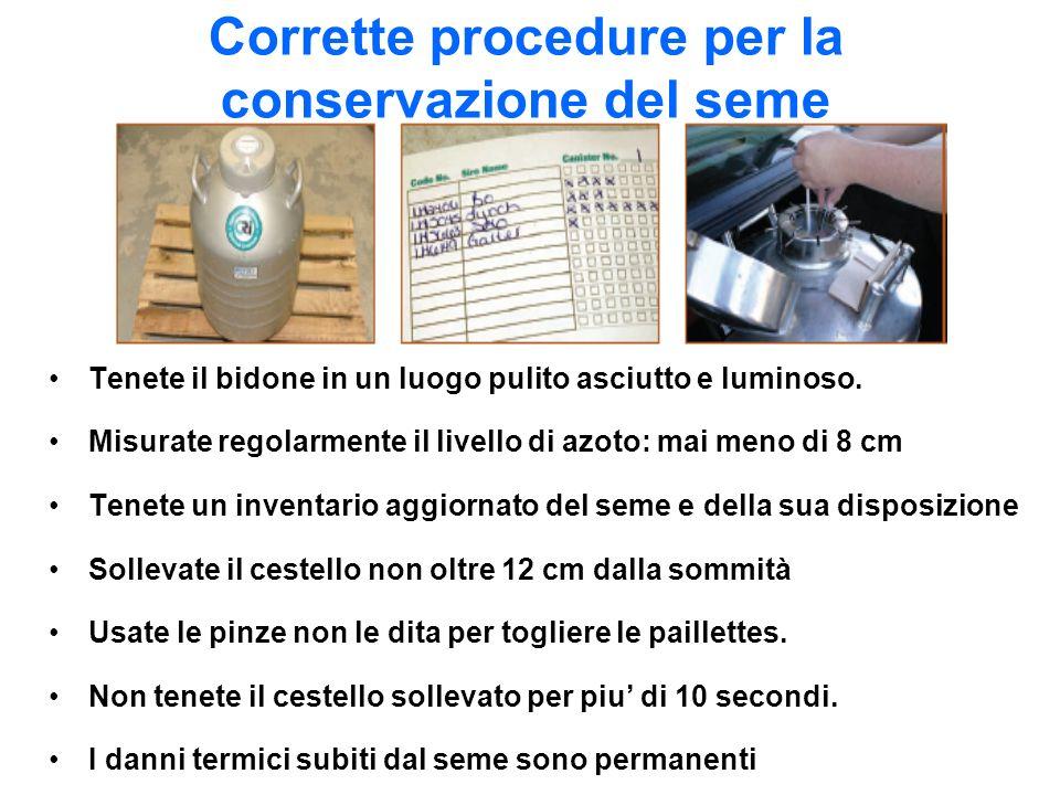 Corrette procedure per la conservazione del seme