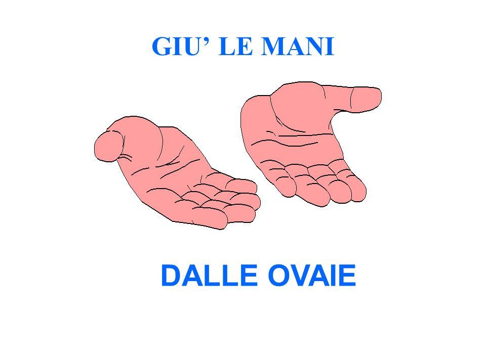 GIU' LE MANI DALLE OVAIE 56