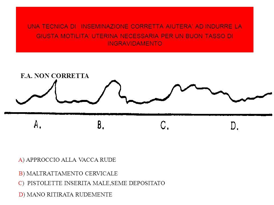 UNA TECNICA DI INSEMINAZIONE CORRETTA AIUTERA' AD INDURRE LA GIUSTA MOTILITA' UTERINA NECESSARIA PER UN BUON TASSO DI INGRAVIDAMENTO