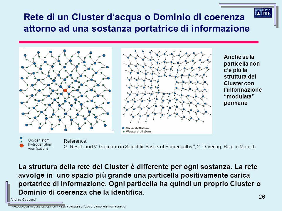 Rete di un Cluster d'acqua o Dominio di coerenza attorno ad una sostanza portatrice di informazione