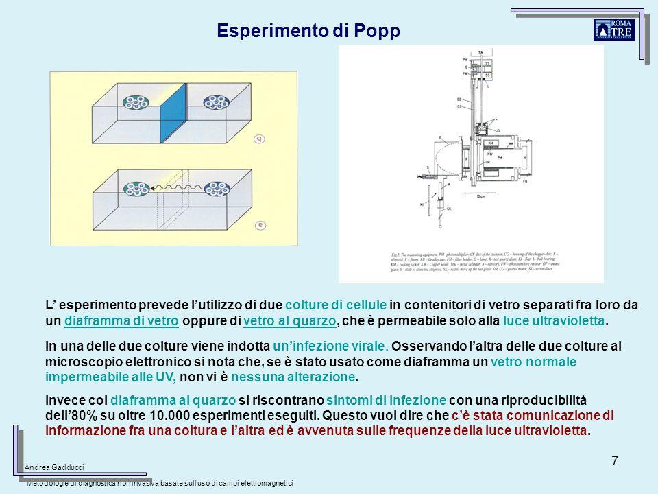 Esperimento di Popp