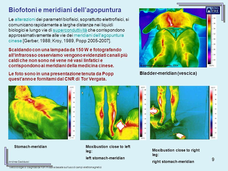 Biofotoni e meridiani dell'agopuntura