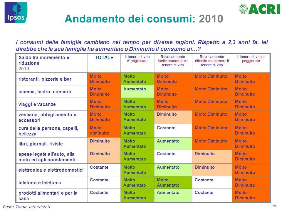 Andamento dei consumi: 2010
