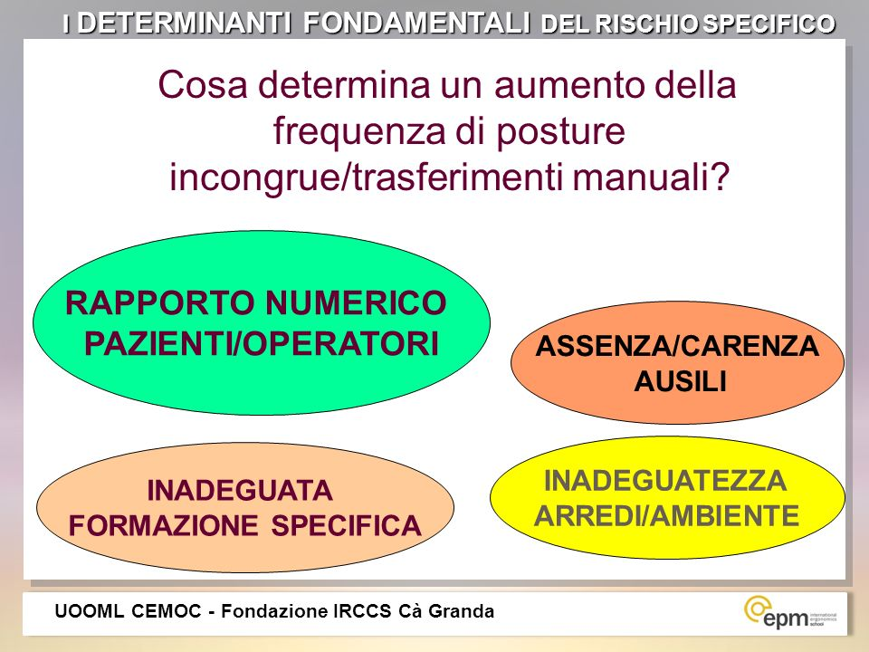 I DETERMINANTI FONDAMENTALI DEL RISCHIO SPECIFICO