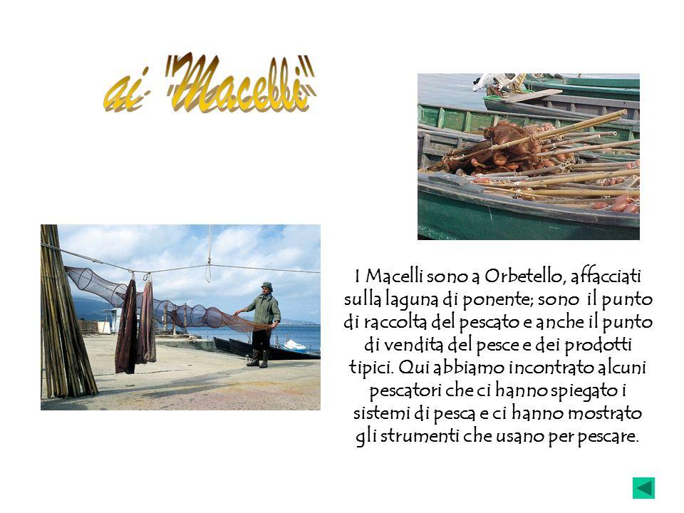 ai Macelli