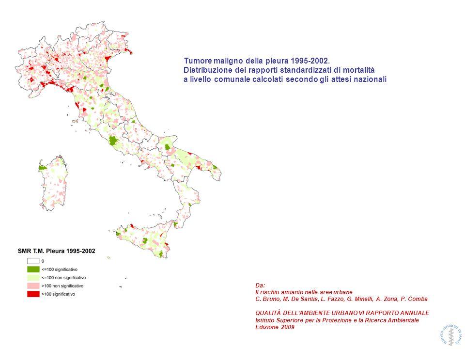 Tumore maligno della pleura 1995-2002.