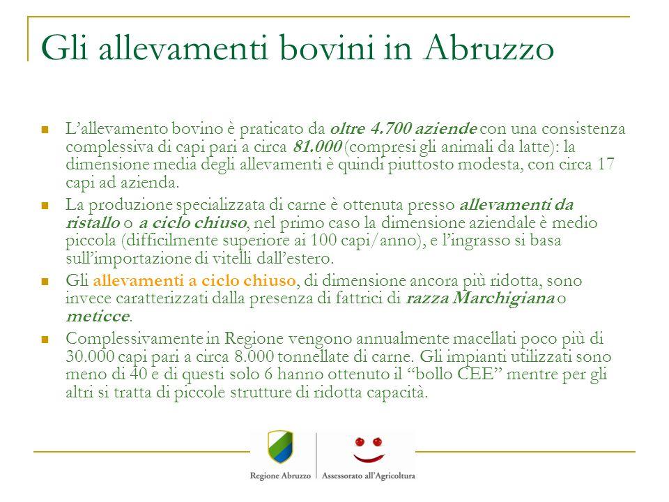 Gli allevamenti bovini in Abruzzo