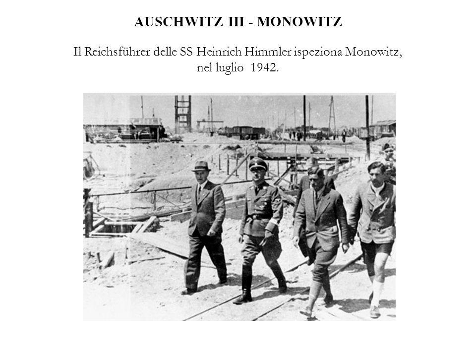 AUSCHWITZ III - MONOWITZ