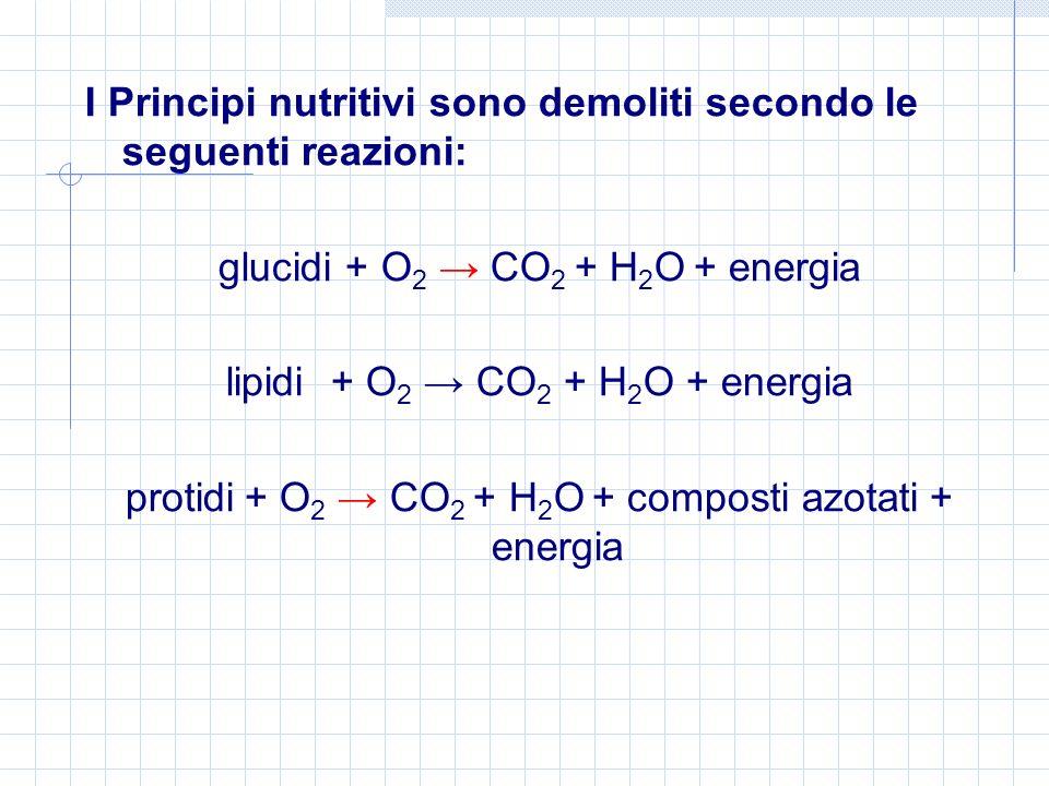 I Principi nutritivi sono demoliti secondo le seguenti reazioni: