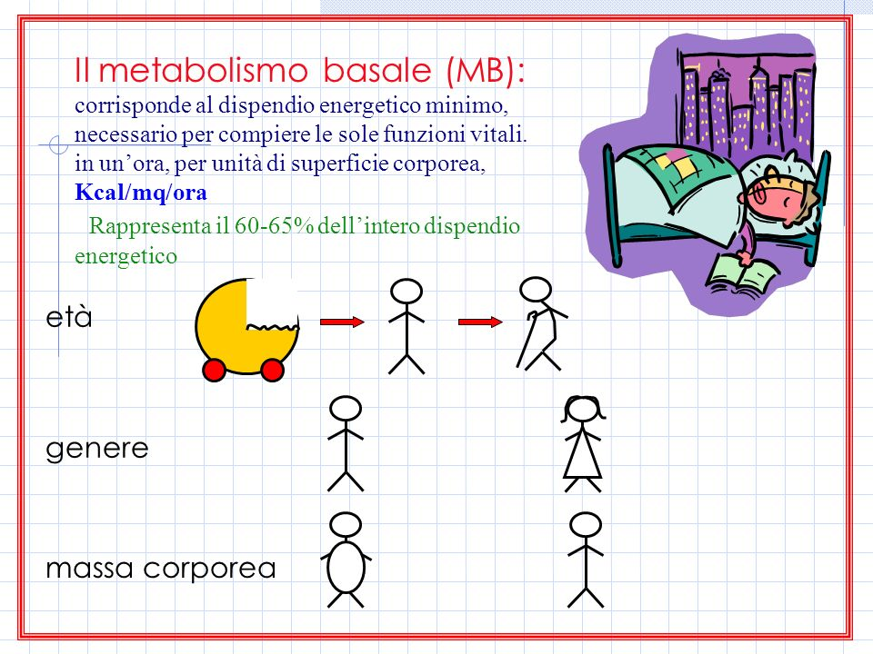 Il metabolismo basale (MB):