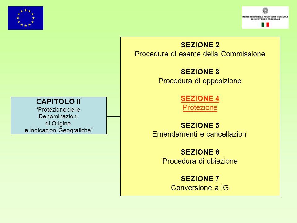Procedura di esame della Commissione SEZIONE 3