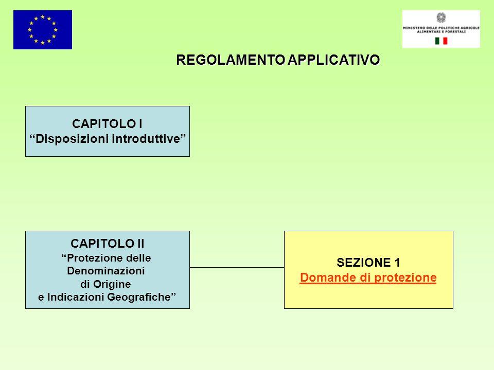 REGOLAMENTO APPLICATIVO Disposizioni introduttive