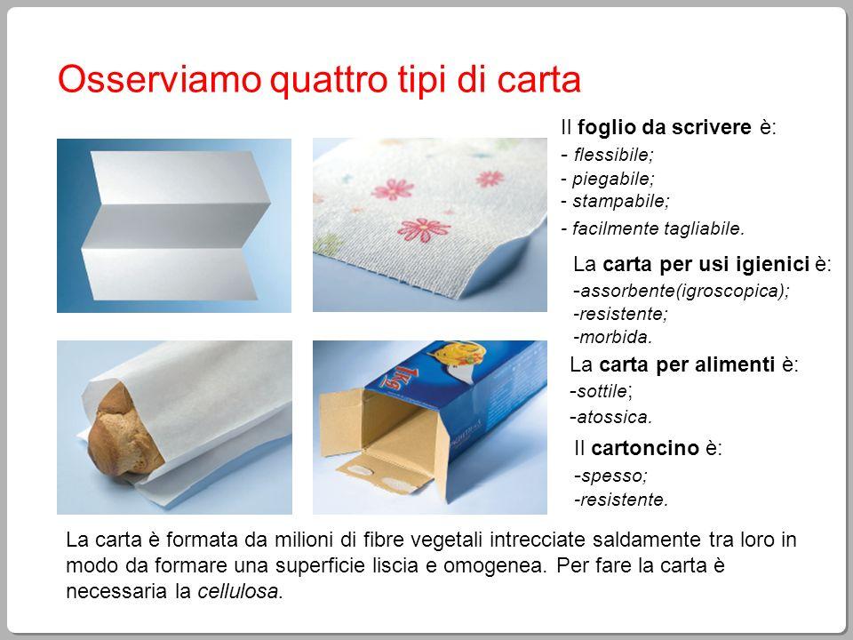 Materiali carta ppt scaricare - I diversi tipi di carta ...