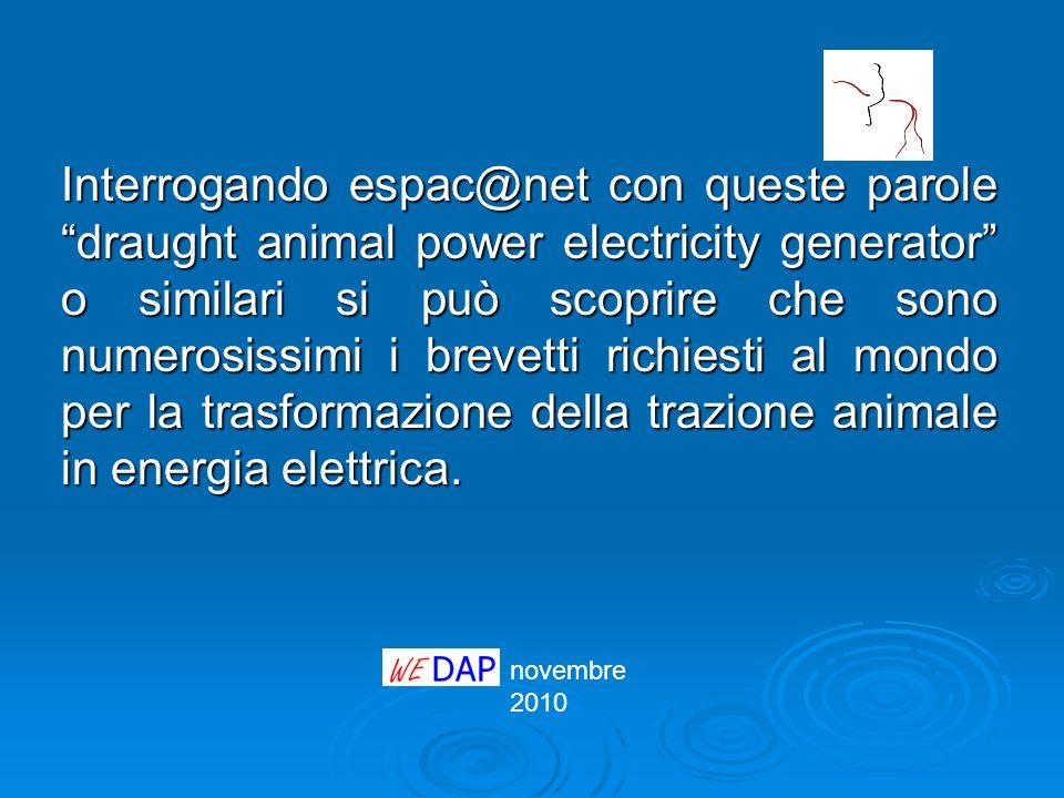 Interrogando espac@net con queste parole draught animal power electricity generator o similari si può scoprire che sono numerosissimi i brevetti richiesti al mondo per la trasformazione della trazione animale in energia elettrica.