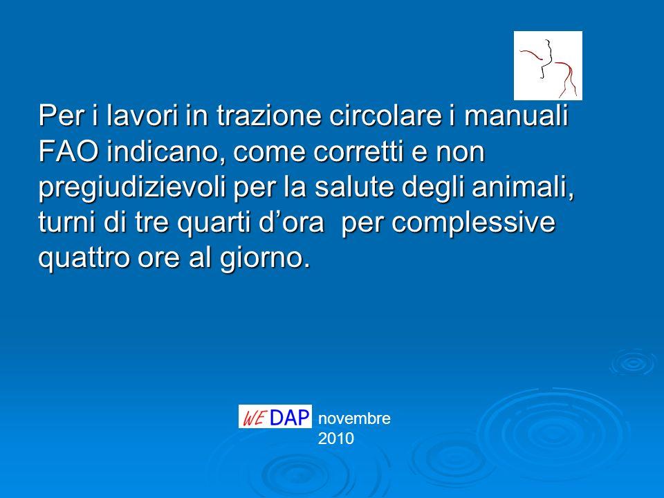 Per i lavori in trazione circolare i manuali FAO indicano, come corretti e non pregiudizievoli per la salute degli animali, turni di tre quarti d'ora per complessive quattro ore al giorno.