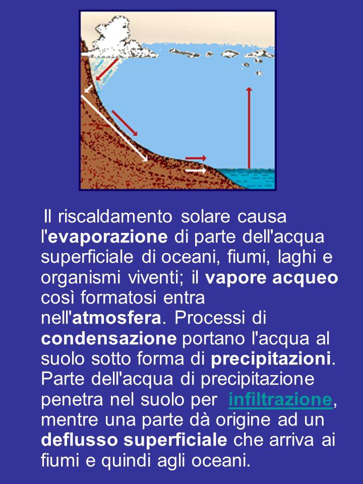 Il riscaldamento solare causa l evaporazione di parte dell acqua superficiale di oceani, fiumi, laghi e organismi viventi; il vapore acqueo così formatosi entra nell atmosfera.
