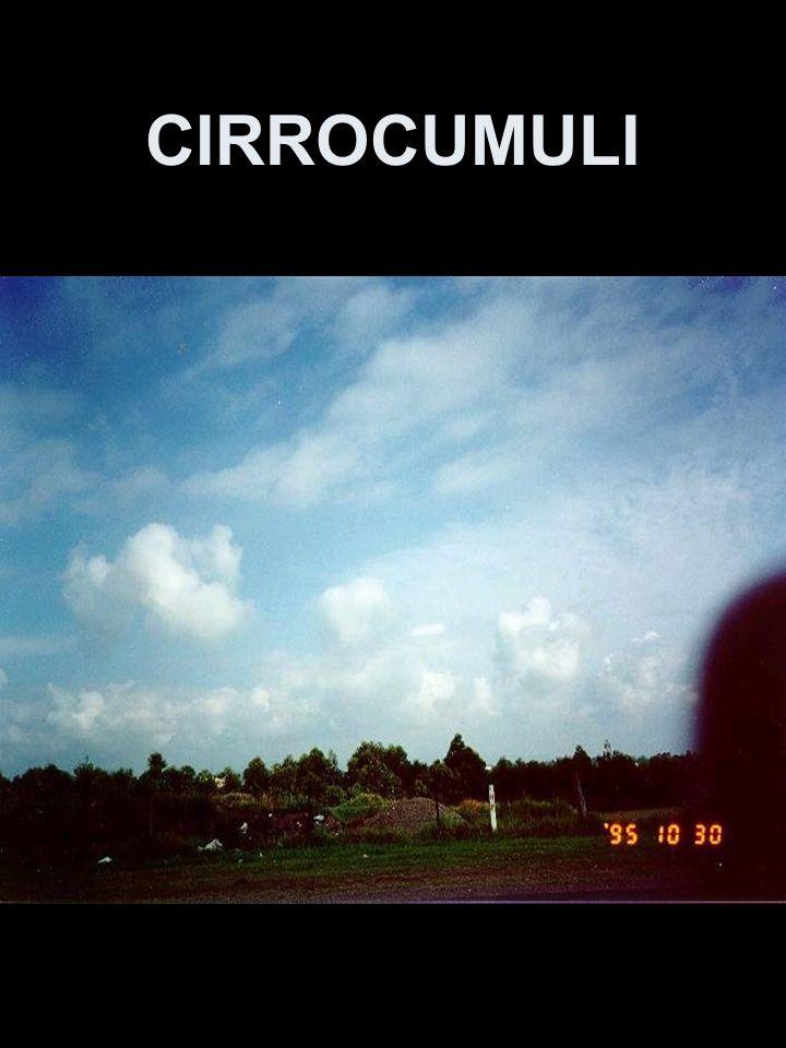 CIRROCUMULI